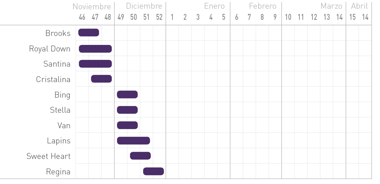 08-grafico-cerezas
